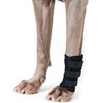 Back on Track Dog Leg Wrap