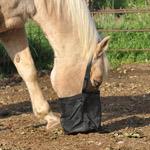 Cashel Feed Rite Bag Horse Size Black