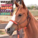 Classic Equine Rope Halter with Two Tone Noseband